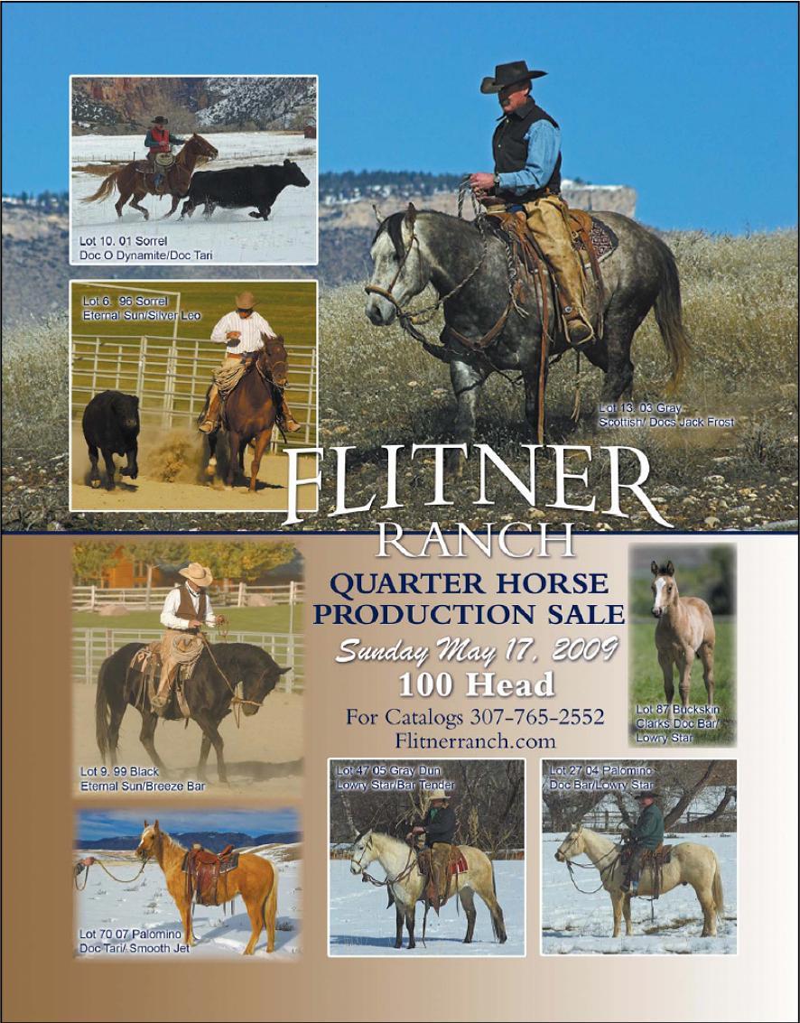 flitner quarter horse sale flyer